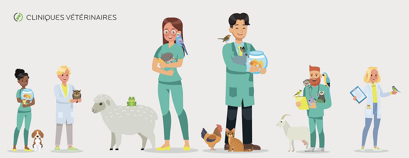 Auxiliaire vétérinaire